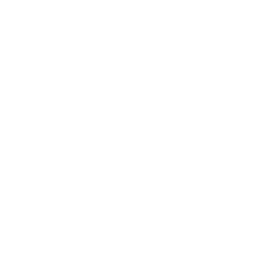 Analyze CMS reports before and after submission